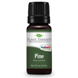 Plant Therapy Pine Essential Oil