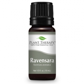 Plant Therapy Ravensara Essential Oil