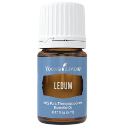 Young Living Ledum Essential Oil