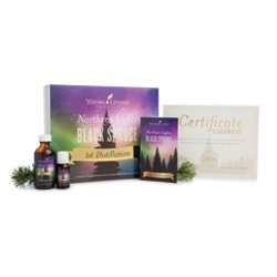 Young Living Northern Lights Black Spruce Essential Oil Collections