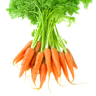 Carrot Essential Oil